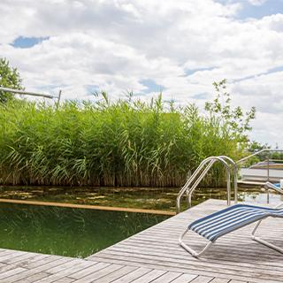 Naherholungsgebiet: Wasser im Garten